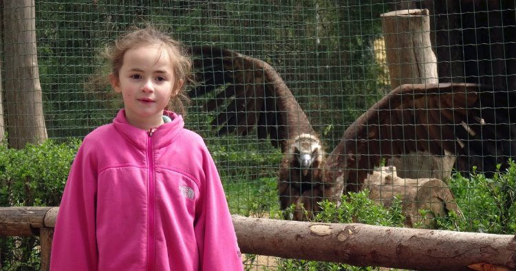 גן החיות בפראג