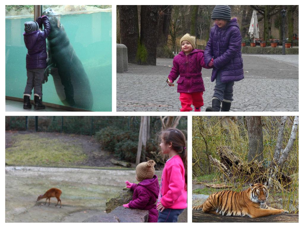 גן החיות של ברלין