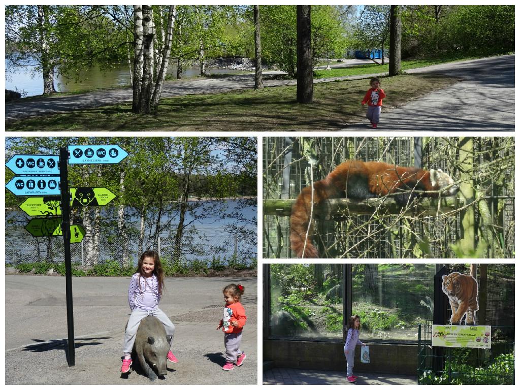 גן החיות של הלסינקי