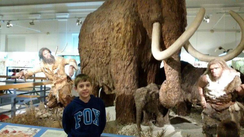 מוזיאון הסטוריה של הטבע בבודפשט