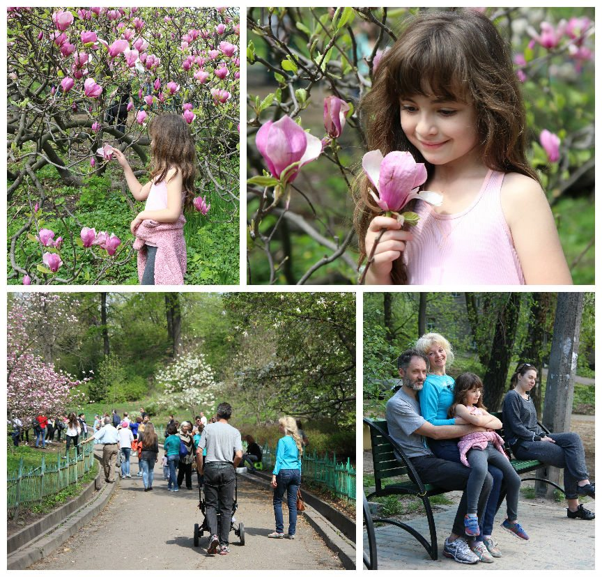 הגן הבוטאני
