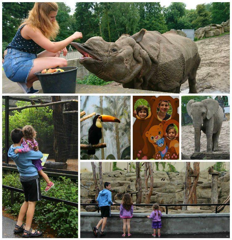 warsaw-zoo